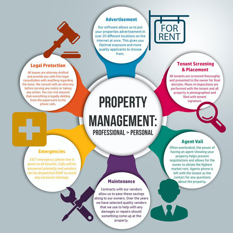 Property management vs self management